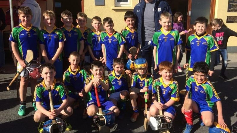 Congratulations Killanena/Feakle Under 10's!